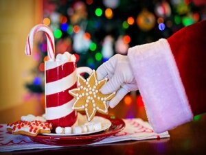 Cookies on a plate for Santa
