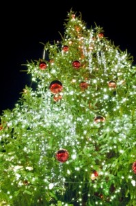 On a Budget: Artificial Christmas Trees vs. Real Trees